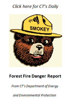 Fire Danger Report